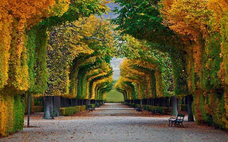 Austria - Vienna - Schοnbrunn Palace 2