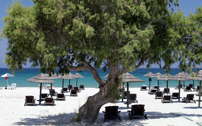 Greece - Kos 11