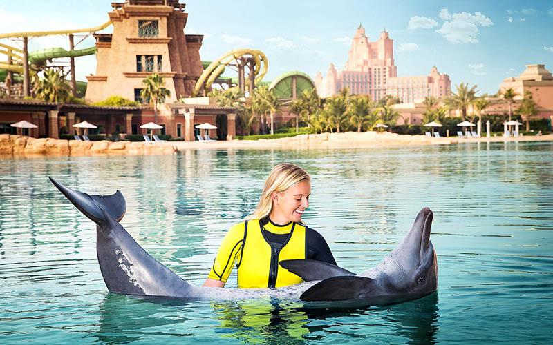 Dubai - Dolphin Swim 1